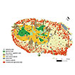 Pollination services mapping and economic valuation from insect communities: a case study in the Azores (Terceira Island)