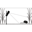 Differential responses of prairie rodents ...